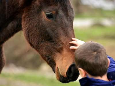 The Benefits of Equine Therapy for People with Autism